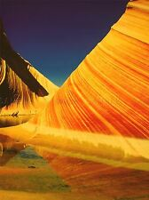 PHOTOGRAPH COYOTE BUTTES NORTH WAVE ROCK FORMATION ART POSTER PRINT LV6920
