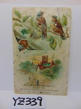 POSTCARD 1900'S ADVERTISING FD SEWARD CONFECTIONERY CO. HUMMING BIRD CANDIES
