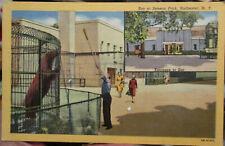 c1940 Zoo at Seneca Park Rochester New York linen postcard