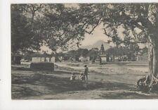 Wai A Peep Through The Trees India Vintage Postcard 064b