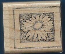 DAISY FLOWER Design Framed Stampin' Up! 2005 Wood Mount Craft RUBBER STAMP