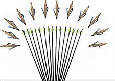 "12X Archery Screw-In 31""Fiberglass Arrows Nocks Hunting&Target Practice Arrow"