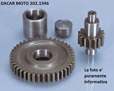 202.1346 ENGRANAJE SECUNDARIO TODOS A LO LARGO DE POLINI MALAGUTI F 12 50