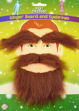 Ginger Beard & Eyebrows for a Fancy Dress Party by Henbrandt - U09 711