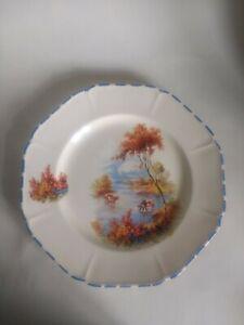 Vintage Coronet Ware Decorative Plate.