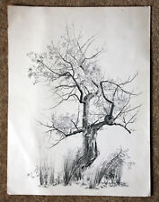 Original pen & pencil drawing, Tree study 2 signed MJ '74