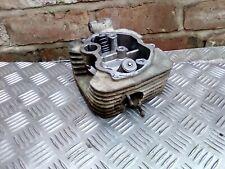 RAM Apache 170 Cylinder Head,valves, engine,quadzilla,barossa,SMC