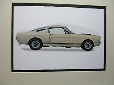 1966 Shelby Mustang GT 350      Artist art Auto Museum Full color  Illustrated