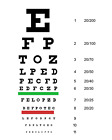 FULL SIZE Illeterate Snellen 22' x 11' Plastic Eye Chart Eye Test Wall, Washable