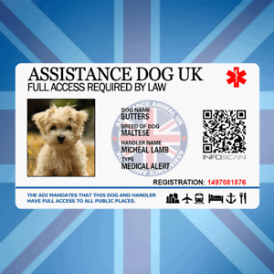 ASSISTANCE DOG UK - SERVICE ID BADGE FOR UNITED KINGDOM GREAT BRITAIN AREA ADi