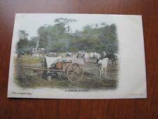 cossack in Postcards   eBay