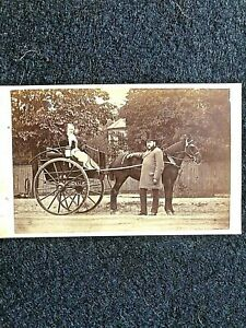 VICTORIAN CDV:COUPLE WITH THEIR HORSE AND CARRIAGE