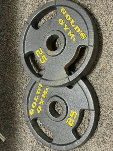 """25 lb Golds Gym 2"""" Olympic Grip Weight Plates Set Of 2 - 50 lbs Total"""