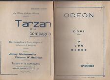 Odeon Catania Italy 1934 Program Tarzan e la Compagna Johnny Weissmuller