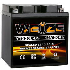 Weize YTX30L-BS High Performance-Maintenance Free-Sealed AGM Motorcycle Battery