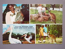 R&L Postcard: Cleland National Reserve Mount Lofty Australia, John Sands