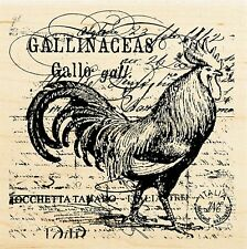 RARE Rooster Elements Collage Wood Mounted Rubber Stamp STAMPENDOUS W113 New