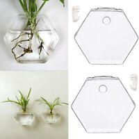 2x Vasi da parete per vasi di terracotta con vaso di vetro idroponica