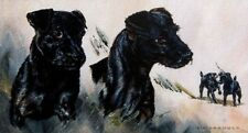 "Limited edition print of Patterdales ""A Likely Couple"" by the late Vic Granger"