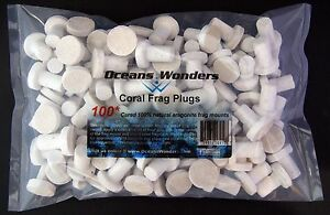 100 CURED CORAL FRAG PLUGS FOR LIVE CORAL REEF PROPAGATION