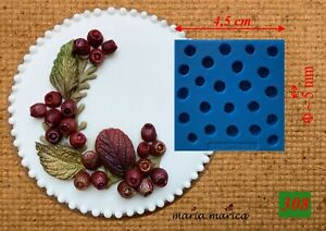 Silikonform silicone mold (308) hawthorn fruit  sugar crafts icing fimo resin