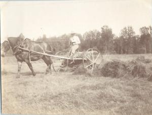 Travail aux champs, un paysan et son attelage Vintage silver print Tirage arge