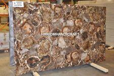 4'x2' Rectangle Marble Petrified Wood Table Top Agate Art Hallway Furniture E242