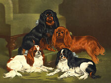 CAVALIER KING CHARLES TOY SPANIEL DOG GREETINGS NOTE CARD CUTE GROUP FOUR DOGS