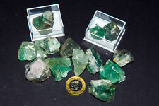 Green FLUORITE healing Crystal in display box. Natural Raw Mineral Chakra