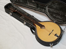 GOLD TONE BZ-500 Bouzouki NEW w/ HARD CASE - Solid Top - Octave Mandolin CITTERN