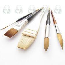Pro Arte Ron Ranson Medium Artists 5 Brush Set. For Watercolour, Gouache