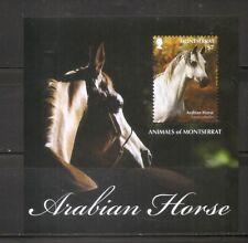 Montserrat - Animals Of Montserrat - Arabian Horse - Souvenir Sheet .MNH