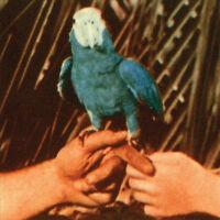 ANDREW BIRD Are You Serious 2016 11-track digipak CD album NEW/SEALED