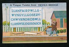 Wales Cardiganshire DEVIL'S BRIDGE Llanfair Pocket Novelty 1939 PPC