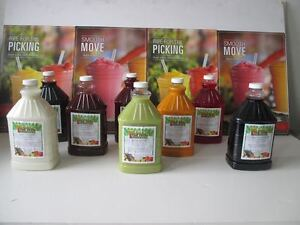 FROZEN DRINK /  GRANITA MIX 4 PLUS 1 CONCENTRATE SMOOTHIE MIX