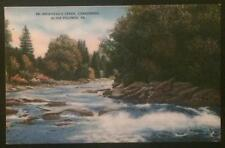 Brodhead's Creek Canadensis in the Poconos PA 1953 Stroudsburg Glass Co 98