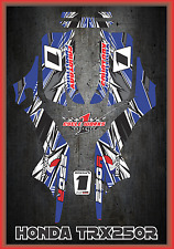 Honda TRX 250R Fourtraxx TRX  SEMI CUSTOM GRAPHICS KIT Detox2