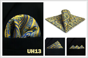 S&W SHLAX&WING Pocket Squares for Men Paisley Blue Green Multicolor Wedding