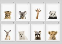 Nursery Wall Art Baby Animal Safari Prints Animal Nursery Decor Nursery A4