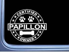 "Certified Papillon L293 Dog Sticker 6"" decal"