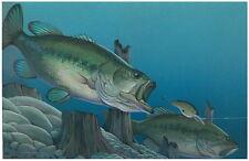 """Largemouth Bass Fishing Print 11 x 14 """"Ambush"""" by Doug Walpus  Wall Decor"""