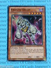 Yu-gi-oh Endless Decay CT09-EN020 Super Rare Mint Limited Edition New