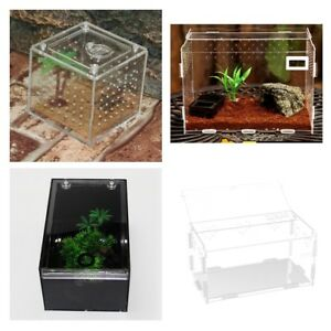 Clear Reptile Box Acrylic Reptile Breeding Tank Terrarium for Lizard Spider Frog