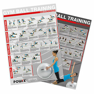 Gym Ball Exercises ( Set of 2 Charts ) Level 1 and 2 , Total Body Workout.