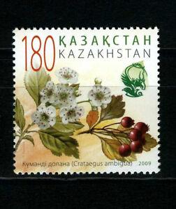 2009. Kazakhstan. Flora. Hawthorn. MNH. Stamp. Sc.606