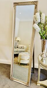 Free Standing Full Length French Mirror( Champagne and Silver) 50x170 cm