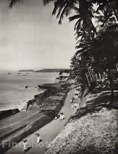 1928 Original INDIA Malabar Coast Tellicherry Palm Landscape Photo By HURLIMANN