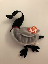 """NWT TY ORIGINAL BEANIE BABIES LOOSY the CANADA GOOSE, 1998, RETIRED, 04206, 6"""""""