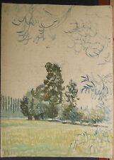 Peinture Huile Sur Toile LUCIEN OTT 1908 ETUDE DE PAYSAGE LO19