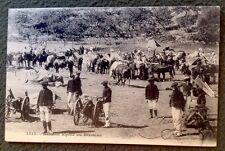 CPA. BATTERIE ALPINE AU BIVOUAC. 1905. Militaires. Chevaux.